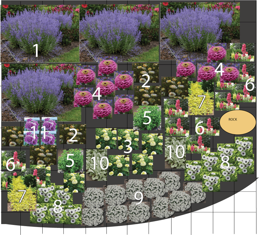 Planning A Front Yard Cut Flower Garden Two Rights And A Left
